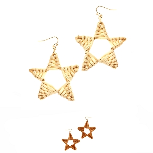 FE3654 Straw Open-cut Star Fish Hook Earring